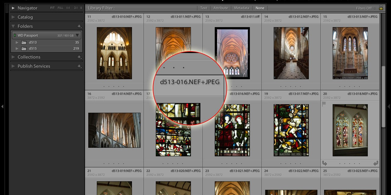 How to manage Lightroom RAW+JPEG pairs