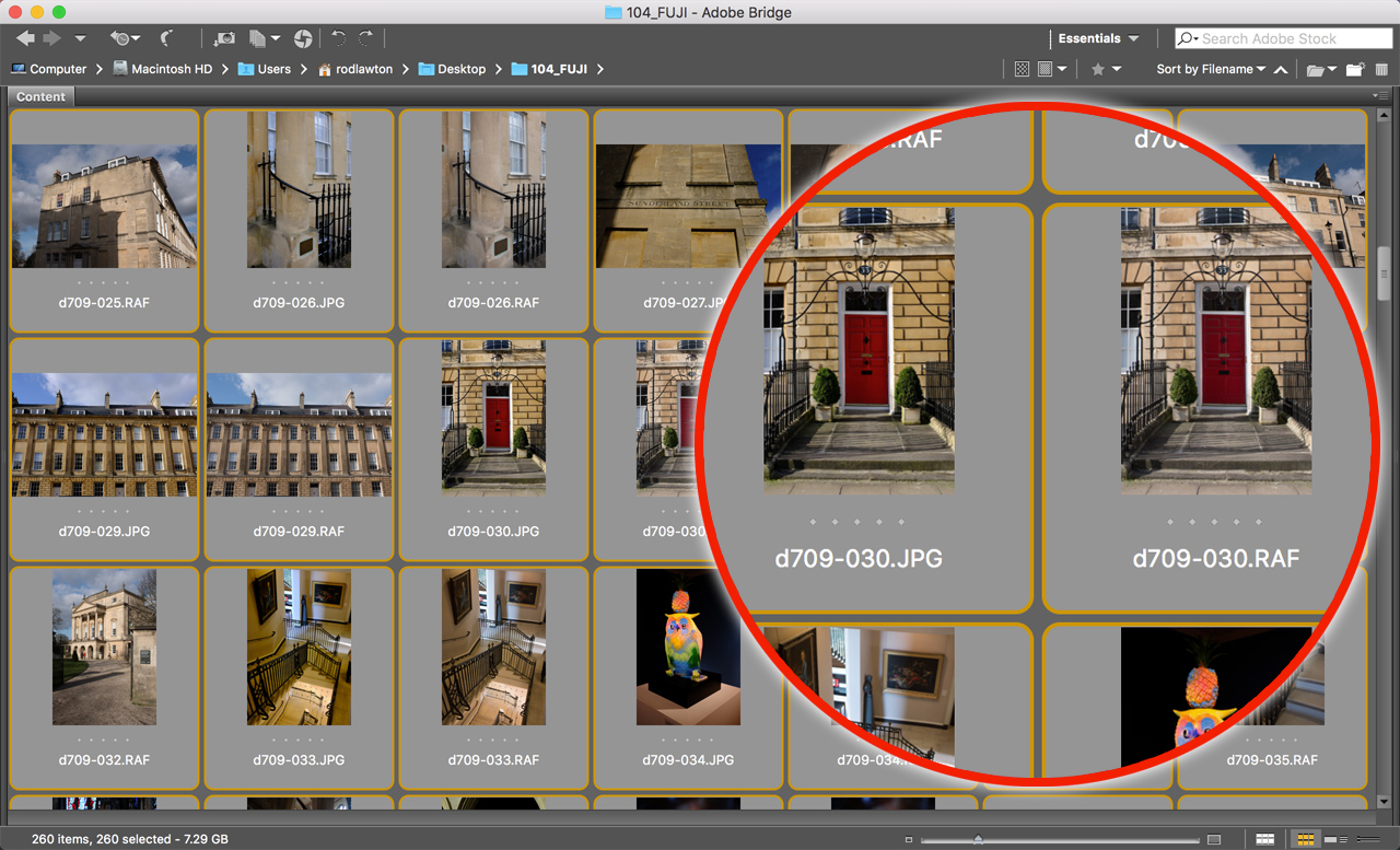 How to batch-rename RAW+JPEG pairs in Adobe Bridge
