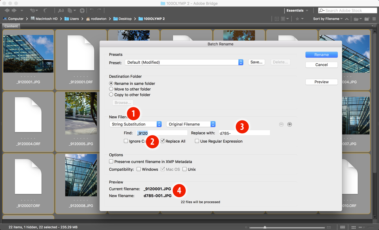 How to use String Substitution in Adobe Bridge